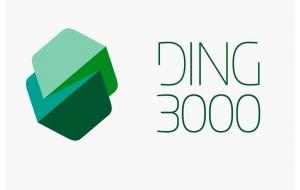 Ding 3000
